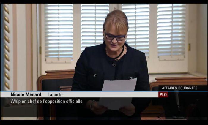 Déclaration Mme Ménard Ass nat